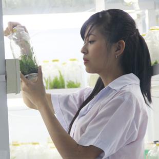 Thạc sĩ Công nghệ sinh học - Đại học Mở Thành phố Hồ Chí Minh