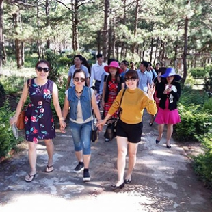 Cử nhân Quản trị Dịch vụ Du lịch và Lữ hành - Đại học Văn Lang