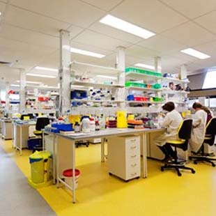Du học Unilink Cử nhân khoa học ứng dụng TASMANIA