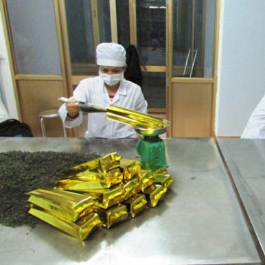 Trung cấp Công nghệ chế biến chè - Cao đẳng cơ điện Phú Thọ