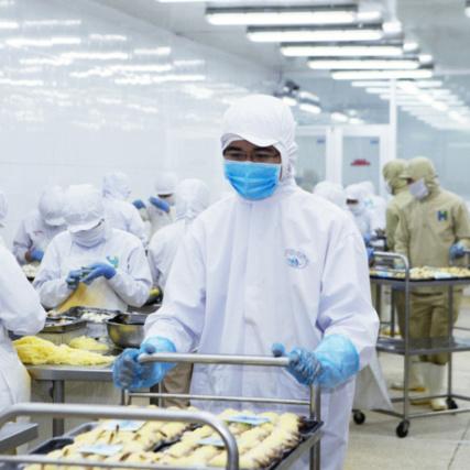 Trung cấp Công nghệ kỹ thuật chế biến & Bảo quản thực phẩm - Trung Cấp Tây Nam Á